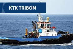 tribon